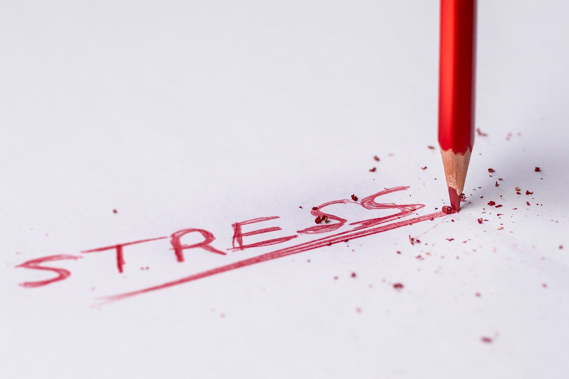 Stress written in red with red pencil next to the word
